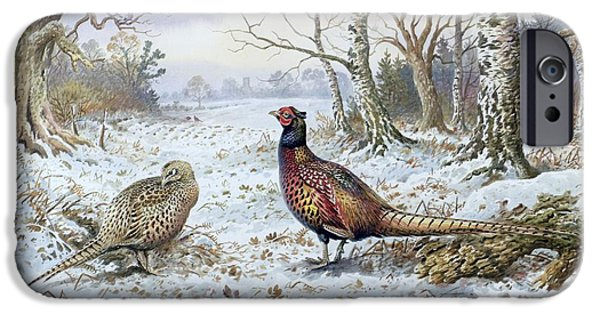 Pair Of Pheasants With A Wren IPhone 6s Case by Carl Donner