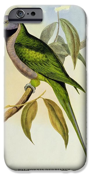Parakeet IPhone 6s Case by John Gould