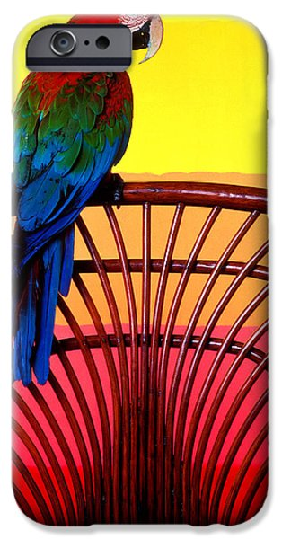 Macaw iPhone 6s Case - Parrot Sitting On Chair by Garry Gay