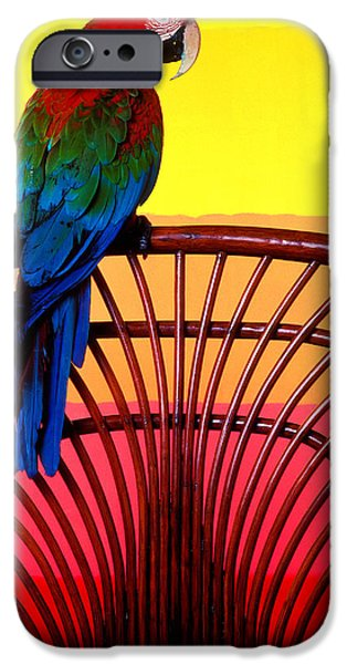 Parrot Sitting On Chair IPhone 6s Case by Garry Gay