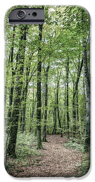 Path Between Trees IPhone 6s Case