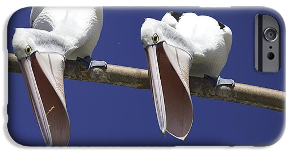 Pelican iPhone 6s Case - Pelican Burp by Sheila Smart Fine Art Photography