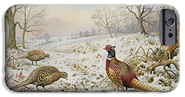 Pheasant And Partridges In A Snowy Landscape IPhone 6s Case by Carl Donner