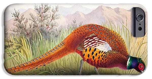 Pheasant IPhone 6s Case