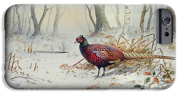 Pheasants In Snow IPhone 6s Case by Carl Donner