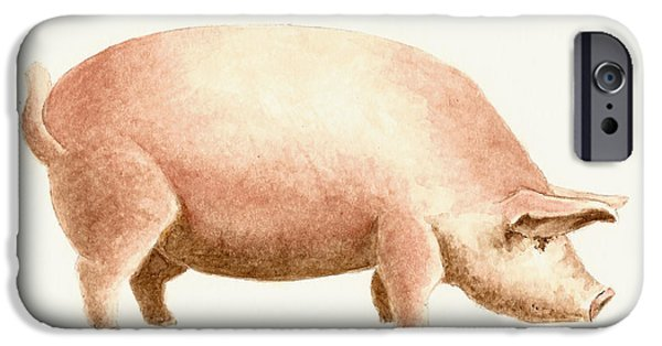 Pig iPhone 6s Case - Pig by Michael Vigliotti
