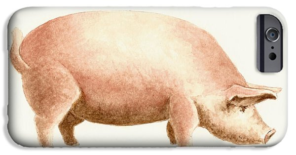 Pig IPhone 6s Case by Michael Vigliotti