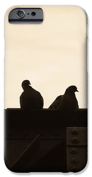 Pigeon iPhone 6s Case - Pigeon And Steel by Bob Orsillo