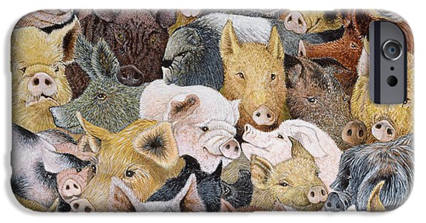 Pigs Galore IPhone 6s Case by Pat Scott