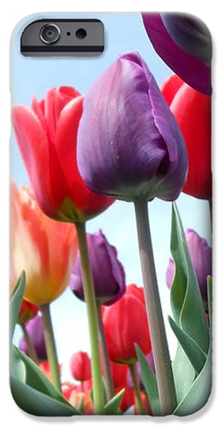 Pink Baby In Tulip Garden IPhone 6s Case