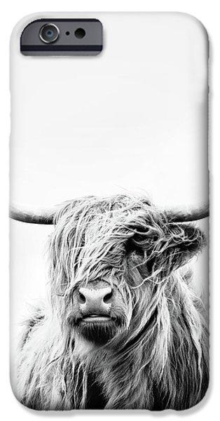 Cow iPhone 6s Case - Portrait Of A Highland Cow - Vertical Orientation by Dorit Fuhg