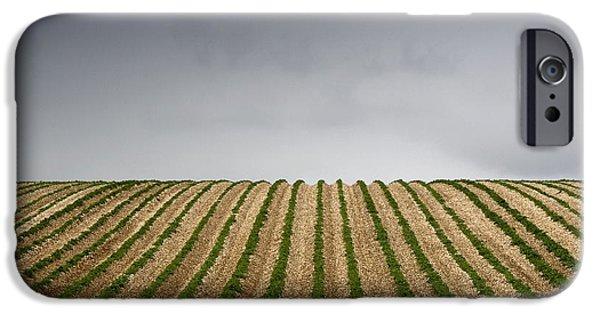 Potato Field IPhone 6s Case by John Short