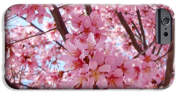 Pretty Pink Cherry Blossom Tree IPhone 6s Case