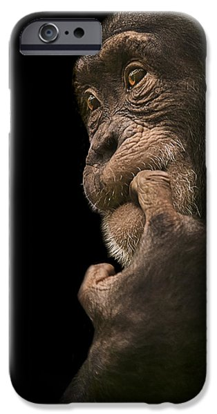 Chimpanzee iPhone 6s Case - Promiscuous Girl by Paul Neville