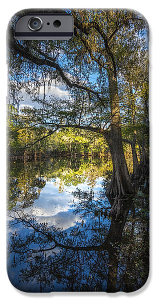 Ibis iPhone 6s Case - Quiet Embrace by Marvin Spates