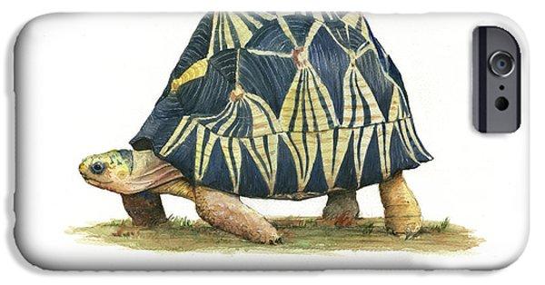 Radiated Tortoise  IPhone 6s Case