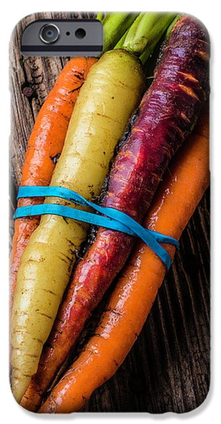 Rainbow Carrots IPhone 6s Case by Garry Gay