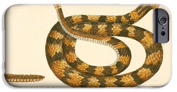 Rattlesnake IPhone 6s Case