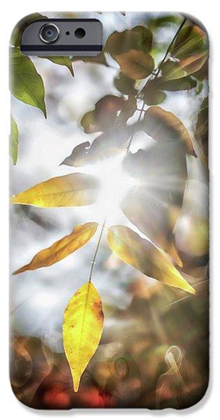 New Leaf iPhone 6s Case - Ray Of Hope by Az Jackson