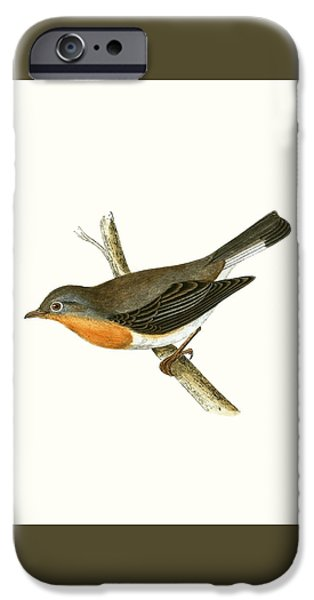 Red Breasted Flycatcher IPhone 6s Case by English School