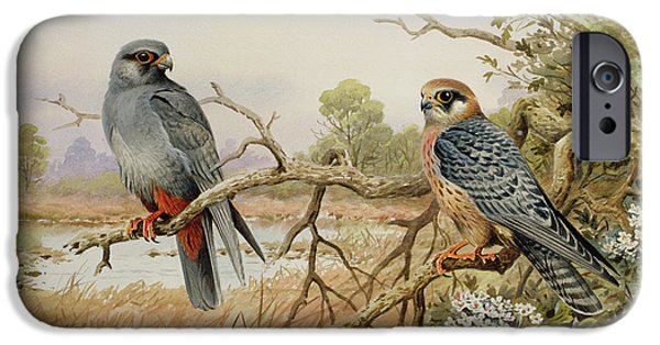 Red-footed Falcons IPhone 6s Case by Carl Donner