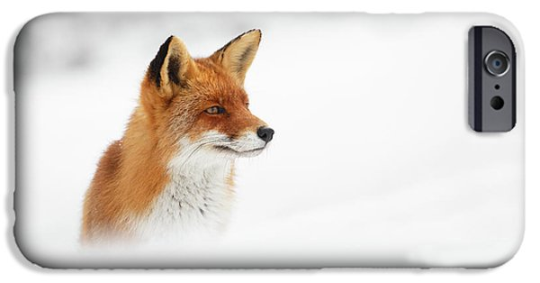 Red Fox Out Of The Blue IPhone 6s Case