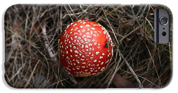Red Spotty Toadstool IPhone 6s Case by Nareeta Martin
