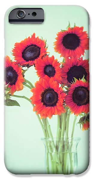 Sunflower iPhone 6s Case - Red Sunflowers by Amy Tyler