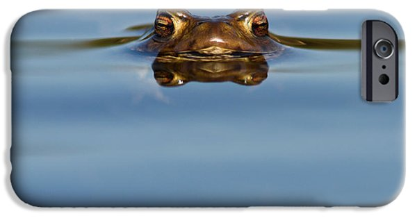 Reflections - Toad In A Lake IPhone 6s Case by Roeselien Raimond