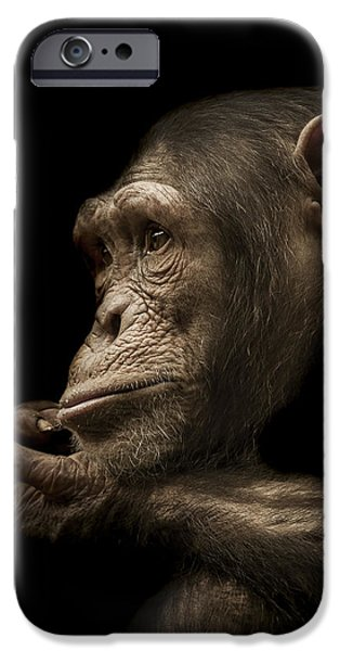 Chimpanzee iPhone 6s Case - Reminisce by Paul Neville