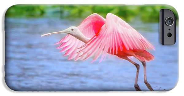 Rise Of The Spoonbill IPhone 6s Case by Mark Andrew Thomas