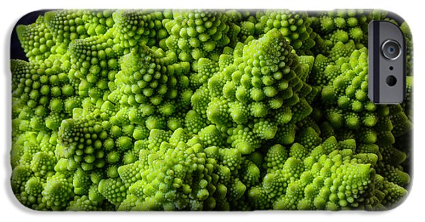 Romanesco Broccoli IPhone 6s Case by Garry Gay