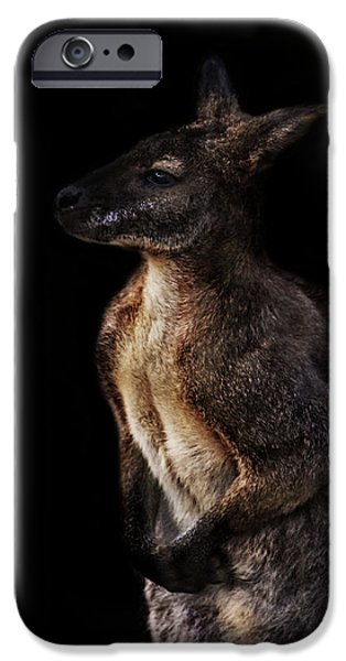 Kangaroo iPhone 6s Case - Roo by Martin Newman