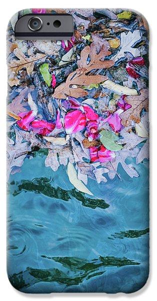 Rose Garden Fountain II IPhone 6s Case