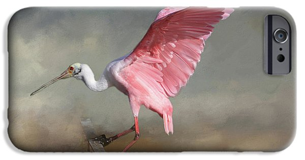 Ibis iPhone 6s Case - Rosy by Donna Kennedy