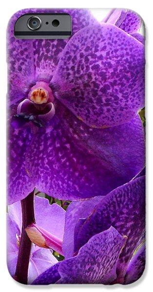 Royal Purple Orchids IPhone 6s Case