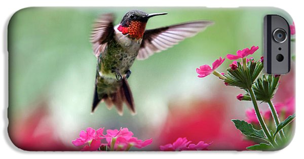 Ruby Garden Jewel IPhone 6s Case by Christina Rollo