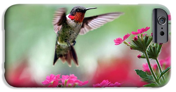 Animals iPhone 6s Case - Ruby Garden Jewel by Christina Rollo