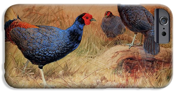 Rufous Tailed Crested Pheasant IPhone 6s Case by Joseph Wolf