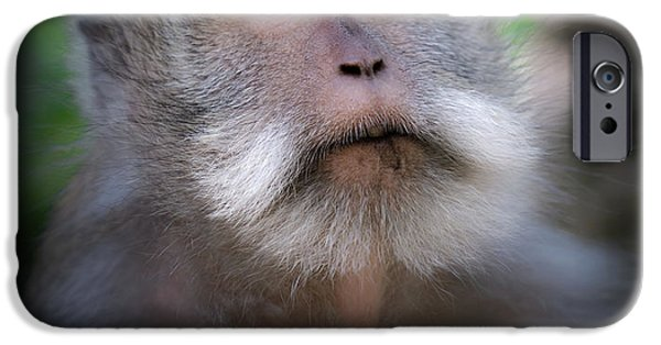 Sacred Monkey Forest Sanctuary IPhone 6s Case by Larry Marshall