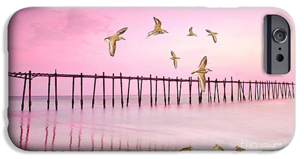 Sandpiper iPhone 6s Case - Sandpiper Sunset by Laura D Young
