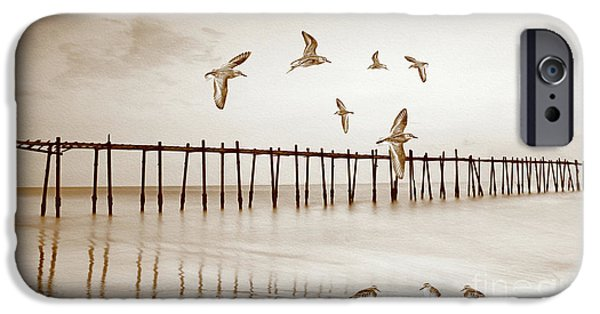 Sandpiper iPhone 6s Case - Sandpipers In Sepia by Laura D Young