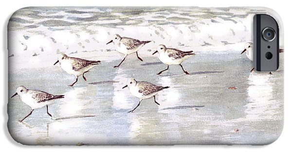 Birds iPhone 6s Case - Sandpipers On Siesta Key by Shawn McLoughlin