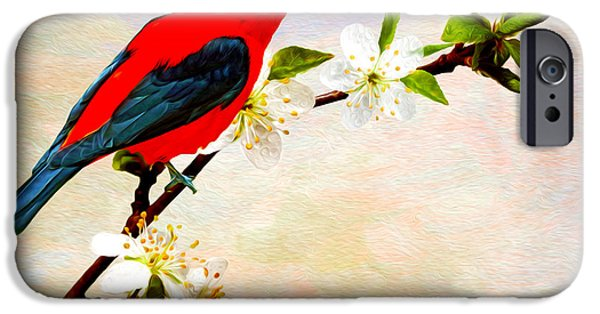 Scarlet iPhone 6s Case - Scarlet Tanager by Laura D Young