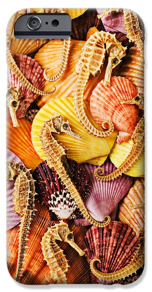 Sea Horses And Sea Shells IPhone 6s Case by Garry Gay