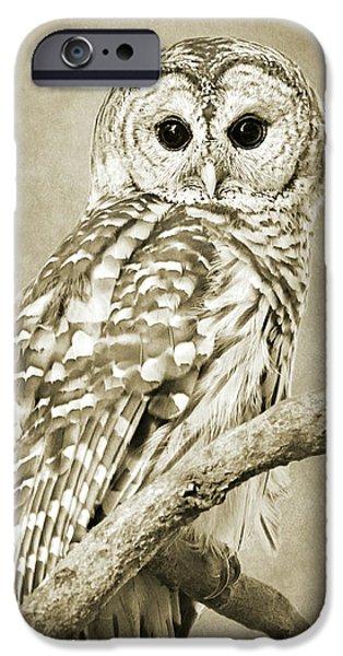 Sepia Owl IPhone 6s Case