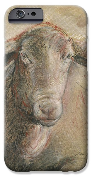 Sheep Head IPhone 6s Case