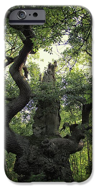 Sherwood Forest IPhone 6s Case by Martin Newman