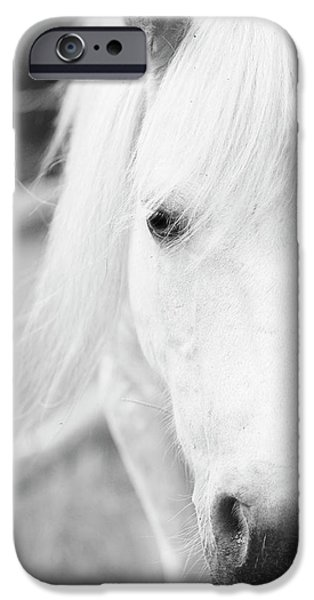 Shetland Pony IPhone 6s Case by Tina Lee