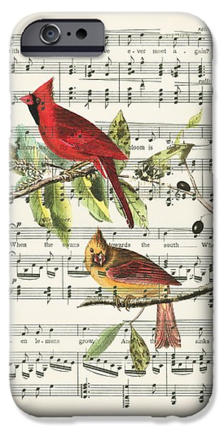 Swallow iPhone 6s Case - Singing Cardinals by Delphimages Photo Creations